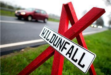 Bremerhaven: Reh verendet auf der Grimsbystraße